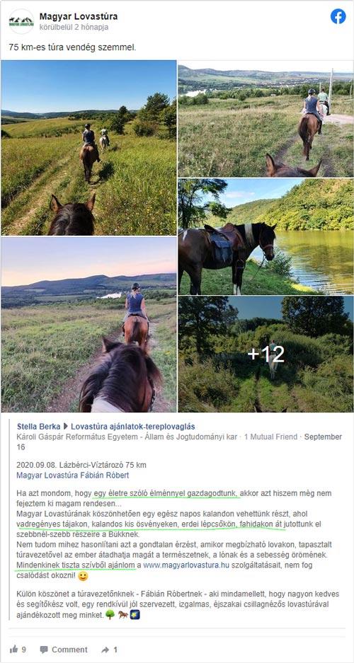 Magyar lovastúra, tereplovaglás, lovaglás vélemény